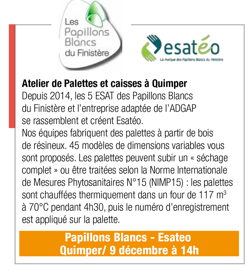 Inscription Papillons Blancs / Esateo, 9 déc., 14h00, Quimper